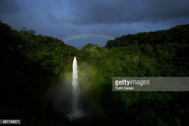 Rainbow appears over Akaka Falls at morning
