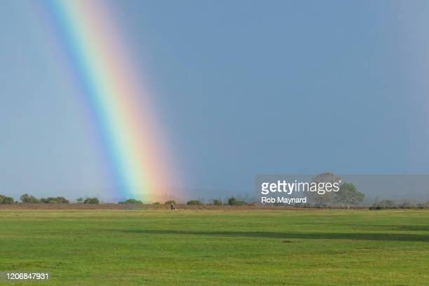 rainbow at new forest, hampshire uk - pride stock pictures, royalty-free photos & images