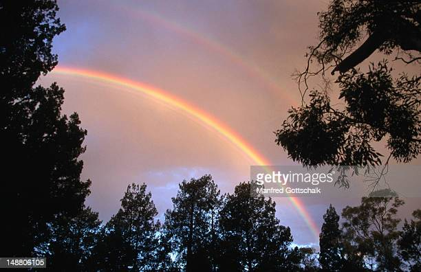 Rainbow brightening the sky over the red gum forest in the Wilpena Pound natural basin.