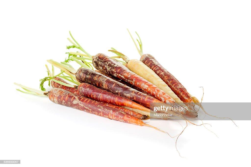 Rainbow carrots : Stock Photo