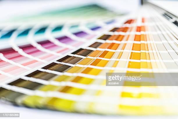 rainbow color swatch