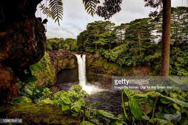 rainbow falls, hawaii - water fall hawaii stock pictures, royalty-free photos & images