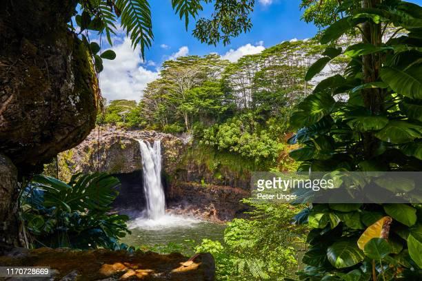 rainbow falls,hilo,big island,hawaii,usa - big island hawaii islands stock pictures, royalty-free photos & images