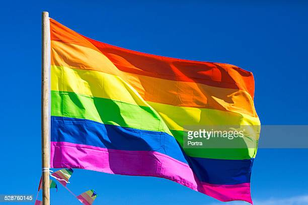 rainbow flag during gay parade - pride flag stock pictures, royalty-free photos & images