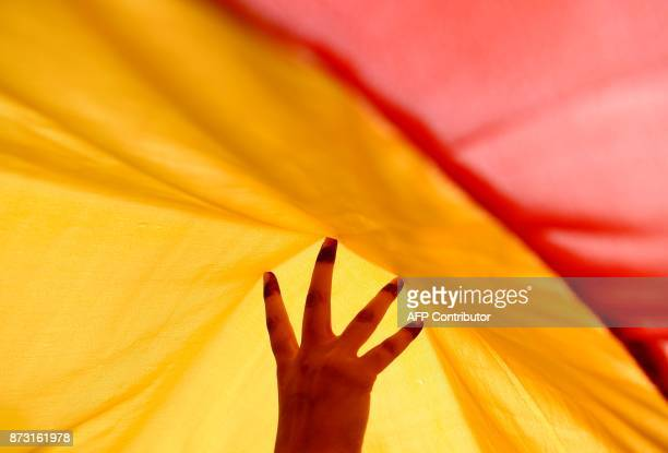 A rainbow flag is carried by Indian members and supporters of the lesbian gay bisexual transgender community during a pride parade in New Delhi on...