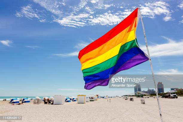 rainbow flag on the beach in south beach, miami, usa - pride flag stock pictures, royalty-free photos & images