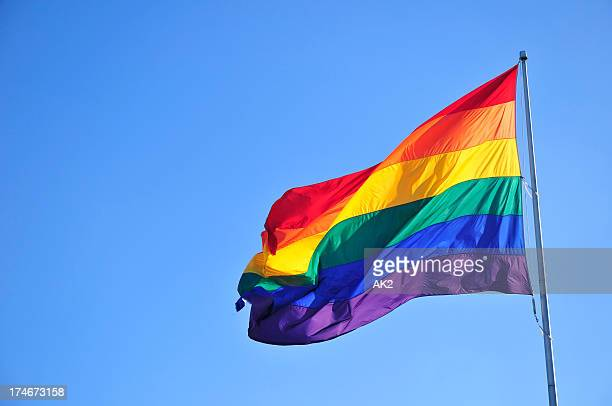 rainbow flag - flag stock pictures, royalty-free photos & images