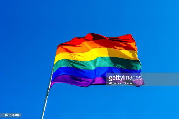 rainbow flag waving in the wind against clear blue sky - orgoglio foto e immagini stock