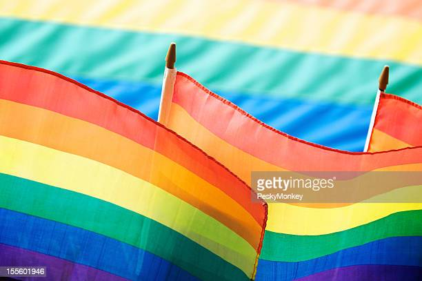 Rainbow Flags Fill the Frame