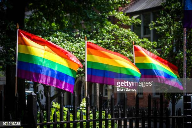 rainbow flags - month stock pictures, royalty-free photos & images