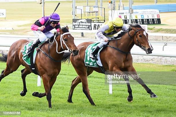 I Am Queen after winning the TAB Multiplier BM64 Handicap at Cranbourne Racecourse on September 19 2018 in Cranbourne Australia
