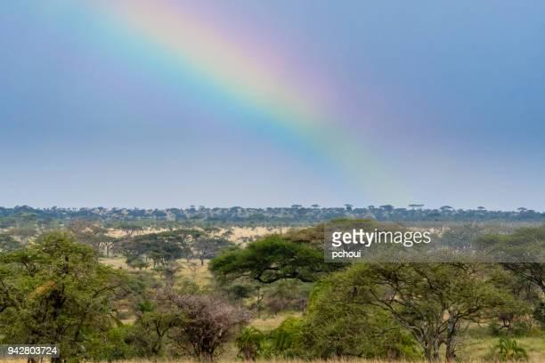 Rainbow in Africa, Serengeti national park.