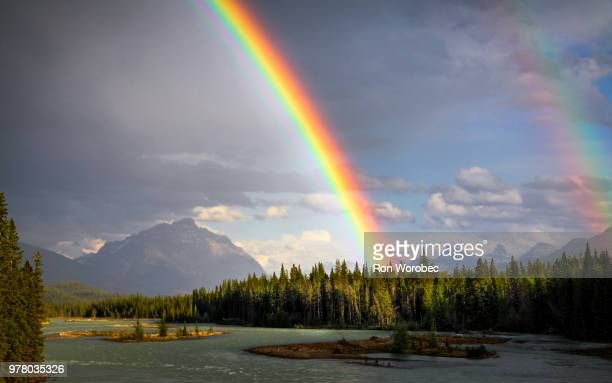 rainbow over athabasca river, athabasca river, jasper national park, canada - rainbow stock pictures, royalty-free photos & images