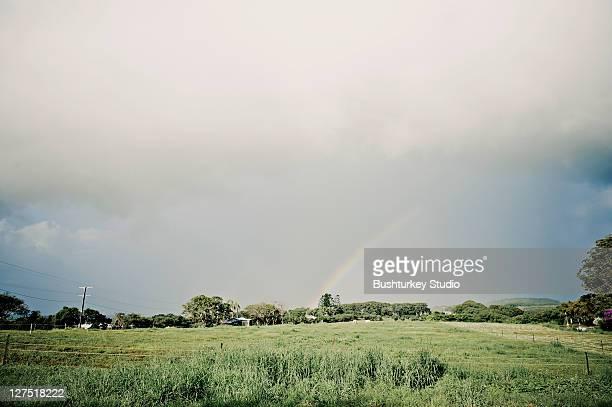 Rainbow over green fields in Byron Bay farm