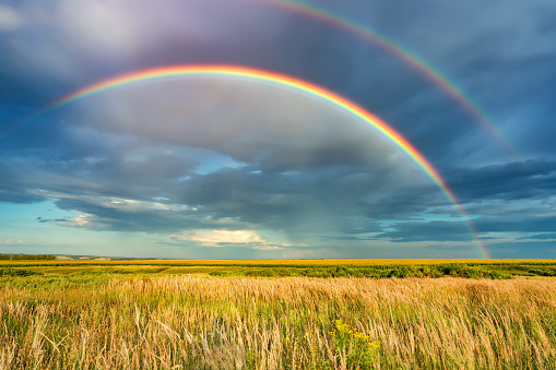 Rainbow over stormy sky in countryside at summer day 1134425211