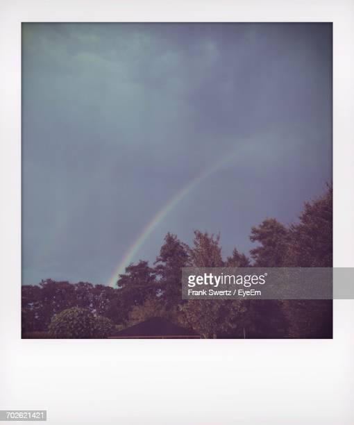 rainbow over trees on field - frank swertz stock pictures, royalty-free photos & images
