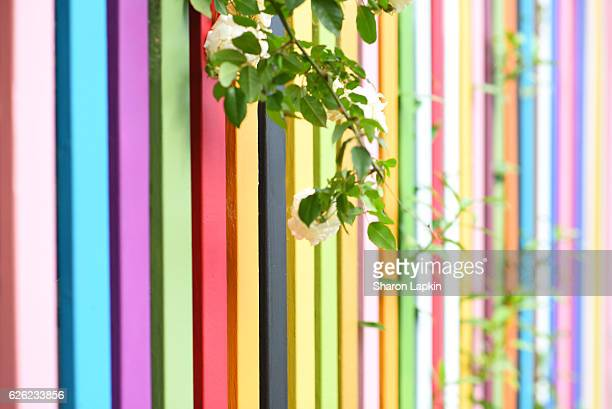 Rainbow picket fence