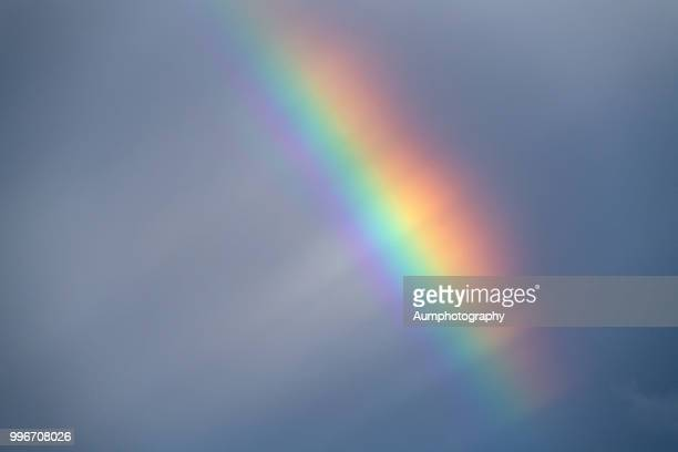 rainbow - spectrum stock pictures, royalty-free photos & images