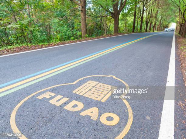 a rainbow-sign road through the forest - changzhou stock pictures, royalty-free photos & images