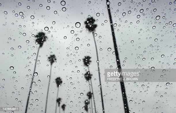 Raindrops are seen on a vehicle's windshield along a treelined street in Alhambra east of downtown Los Angeles on April 13 2012 in California...