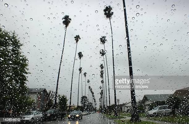 Raindrops are seen on a vehicle's windshield as a car makes its way down a treelined street in Alhambra east of downtown Los Angeles on April 13 2012...