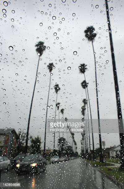 Raindrops are seen on a vehicle's windshield as a car makes its way along a treelined street in Alhambra east of downtown Los Angeles on April 13...