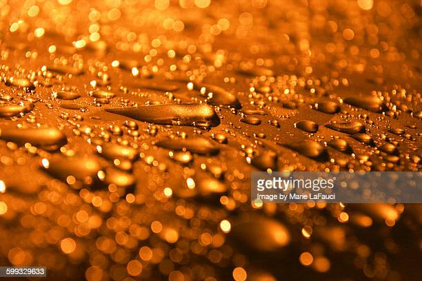 raindrops beaded up on car surface - fauci stock pictures, royalty-free photos & images