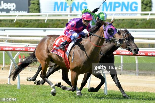 Raindrops On Roses ridden by Craig Williams wins the Highview Accounting Mornington Hcp at Mornington Racecourse on December 13 2017 in Mornington...