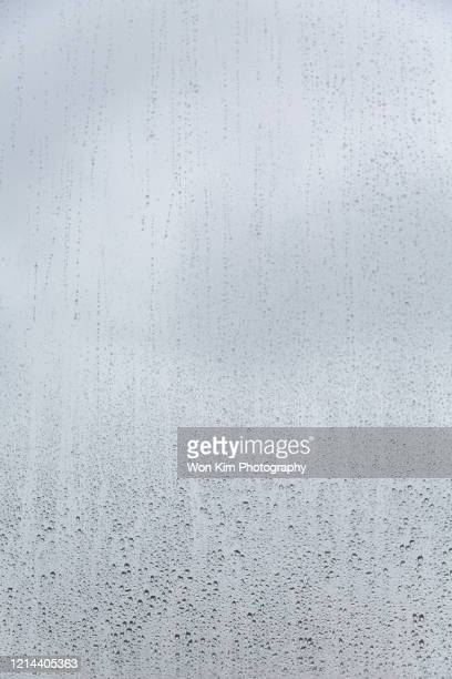 raindrops - humid stock pictures, royalty-free photos & images