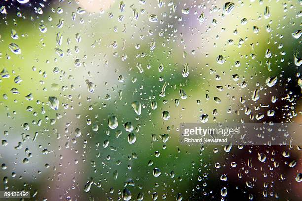 raindrops - raindrop stock pictures, royalty-free photos & images