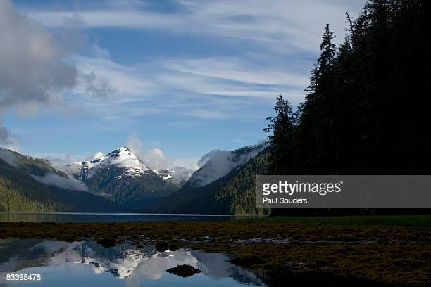 Rainforest and Mountains, Misty Fjords, Alaska