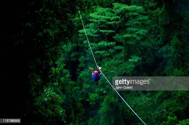 Rainforest Canopy Zip Line
