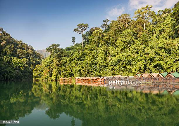rainforest jungle huts, khao sok national park, thailand - kao sok national park stock pictures, royalty-free photos & images