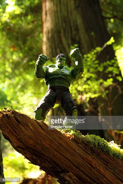 rainforest rage - incredible hulk stock photos and pictures