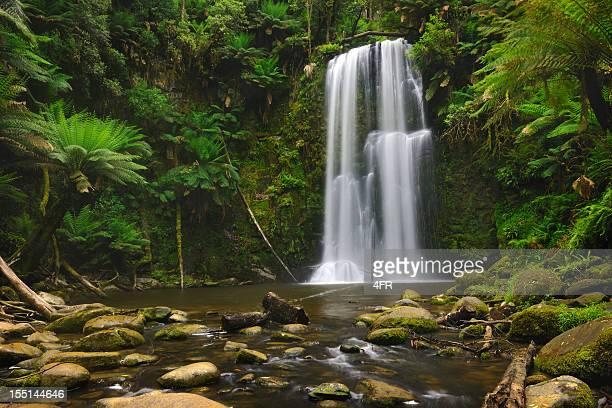 Rainforest Waterfall, Beauchamp Falls, Australia (XXXL)