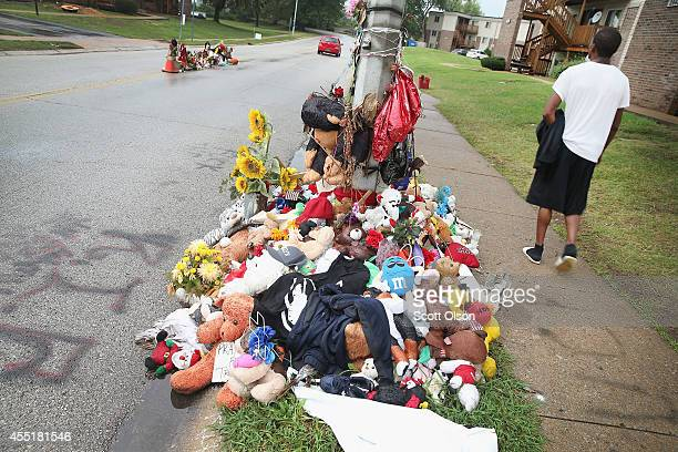 A rainsoaked memorial remains at the location where teenager Michael Brown was shot and killed by Ferguson police officer Darren Wilson about a month...