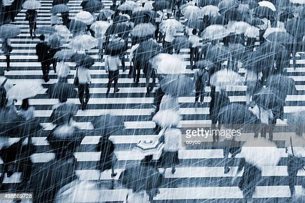 Rainy Commuters at Crosswalk