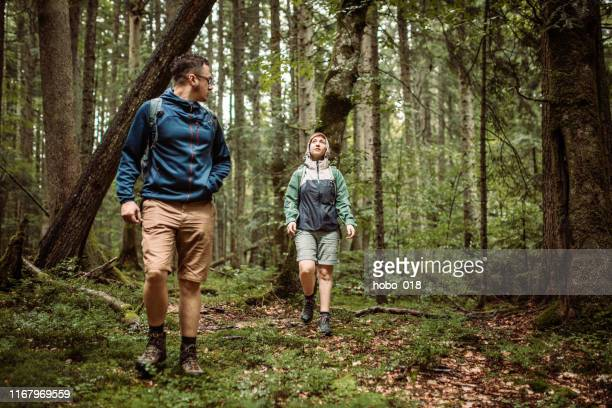 regnig dag är bra för skogsvandring - endast vuxna bildbanksfoton och bilder
