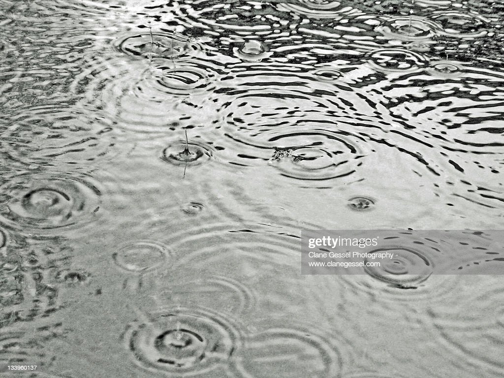 Rainy day : Stock Photo