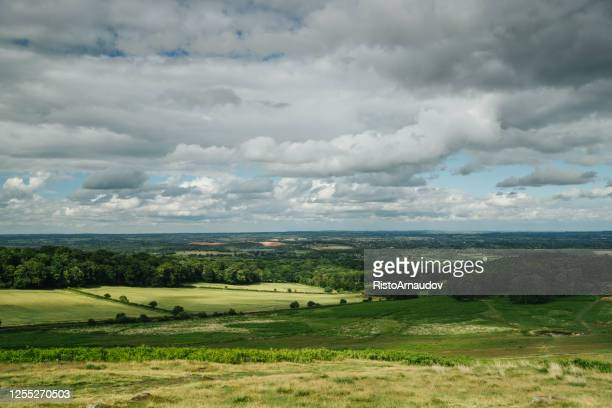 rainy landscape from bradgate park united kingdom - leicester stock pictures, royalty-free photos & images