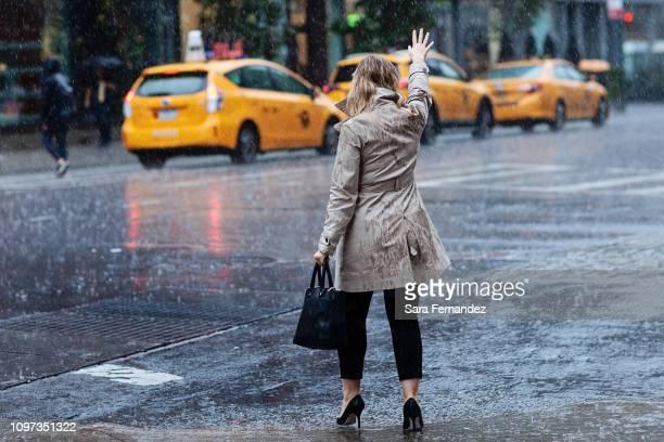 rainy taxi - イエローキャブ ストックフォトと画像