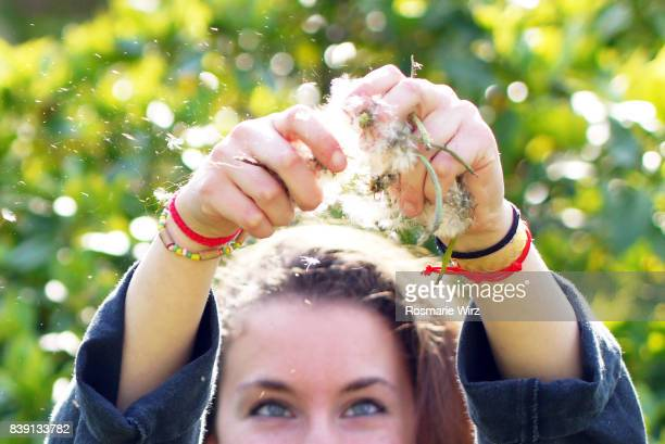 raised arms of young woman dispersing dandelion seeds - charm bracelet stock pictures, royalty-free photos & images