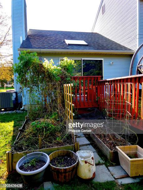 raised bed garden - garden decking stock pictures, royalty-free photos & images