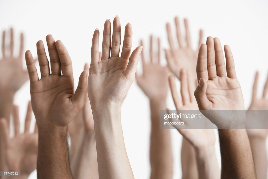 Raised Hands : Stock Photo