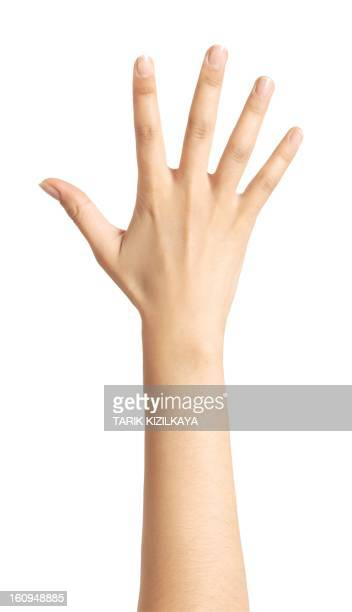 a raised isolated woman's hand - human arm stock pictures, royalty-free photos & images