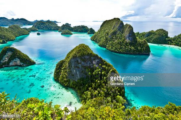 raja ampat islands, wayag - indonesien stock-fotos und bilder