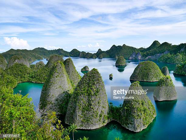 raja ampat papua beach and islands. - raja ampat islands stock photos and pictures