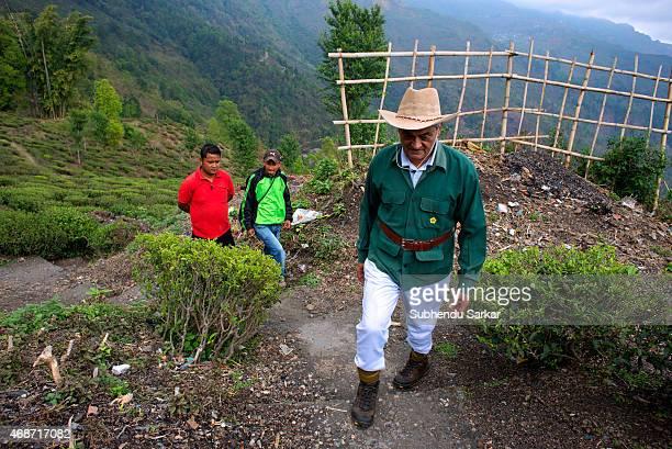 Rajah Banerjee walks surveying the work at Makaibari tea estate Set up in 1859 off Kurseong in the Darjeeling hills the Makaibari estate is the...