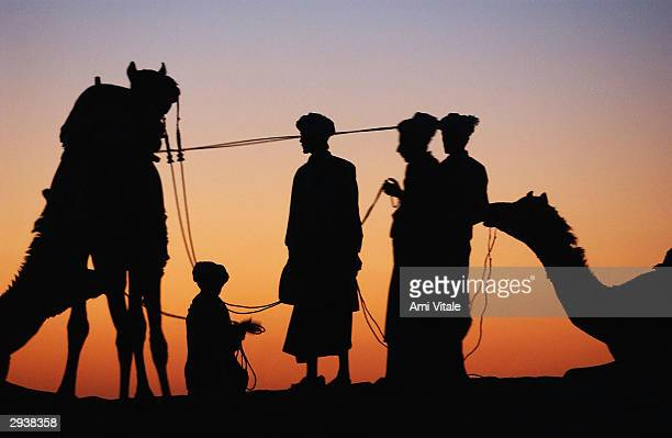 Rajasthani camel owners look for customers to be given rides on the last day of the Desert Festival of Jaisalmer on February 6 2004 in Rajasthan...