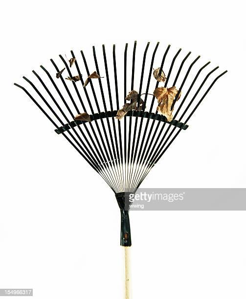 rake and leaves - rake stock pictures, royalty-free photos & images
